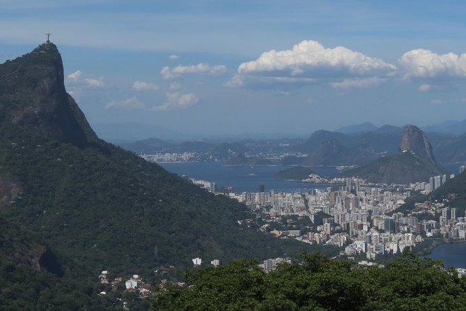 Full-Day Custom Private Tour of Rio