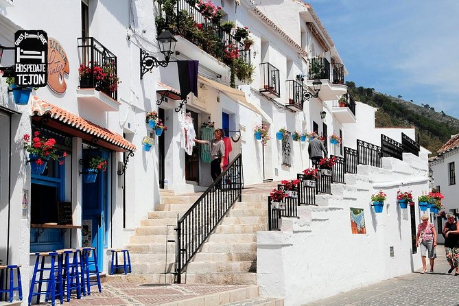 Malaga private Shore Excursion: Malaga Highlights & Mijas White Washed Village