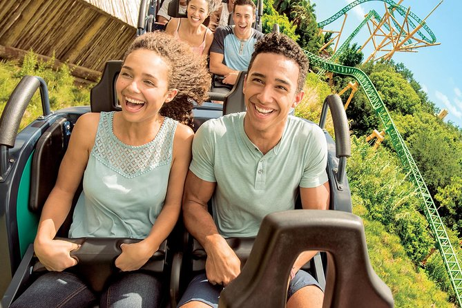 Round Trip Theme Park Transportation From Miami To Orlando 2019