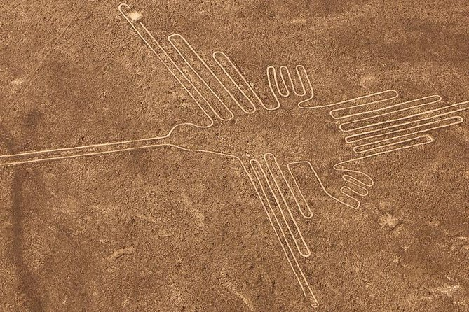 Full Day Tour, Flight Over the Nazca Lines