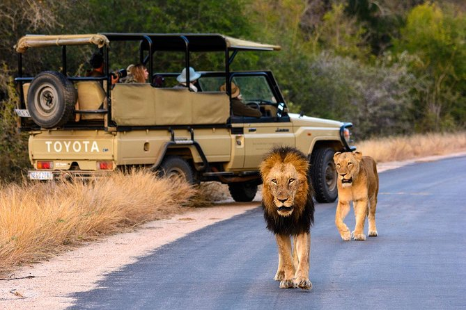 Kruger National Park 2Days&1night Tour from Johannesburg