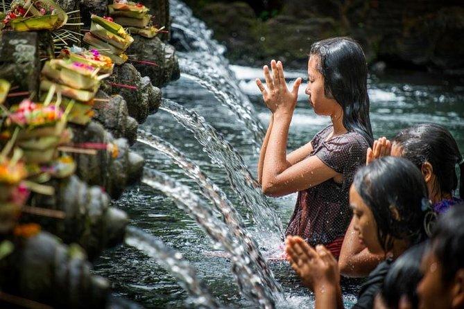Excursion culturelle privée d'une journée complète à Ubud, Bali
