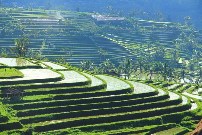 Bali Easy And Flexible Tour