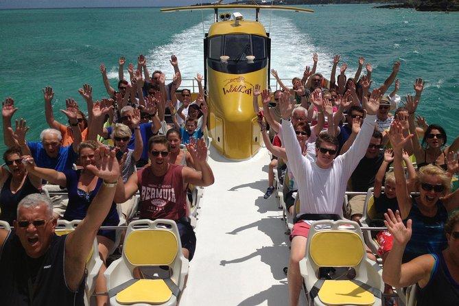 Wildcat Boat Adventure Blast in Bermuda
