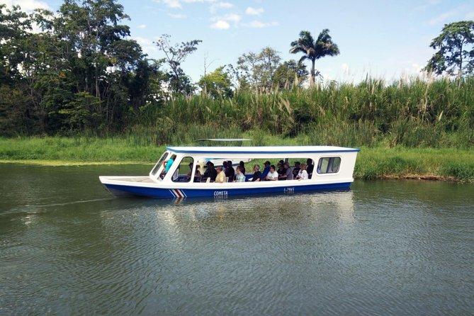 Promenade en bateau sur les canaux de Tortuguero