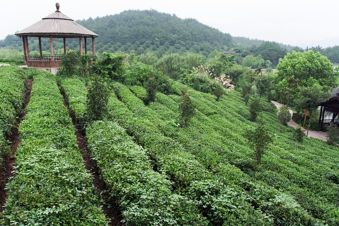 4-Day Hangzhou Private Tour: West Lake and Longjing Tea Plantation