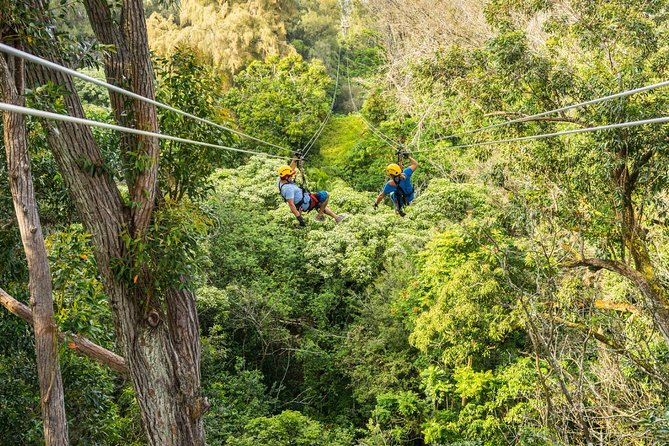 Big Island Kohala Zip and Dip Tour from Kona