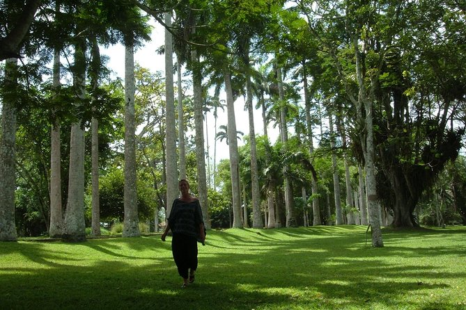 Tour di Aburi Botanical Gardens e Shai Hills