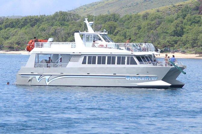 Quicksilver Lanai Snorkeling and Dolphin Encounter