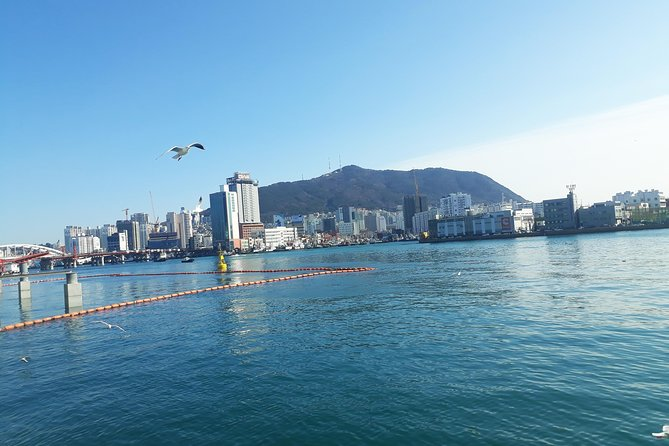The most popular 16 places in Busan Full Package Tour from Seoul(2D1N)