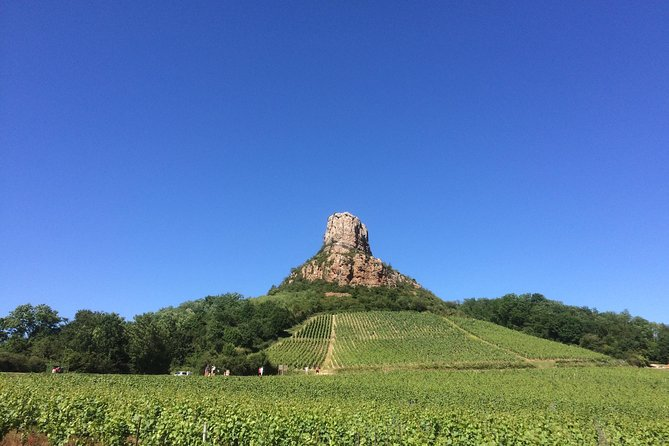 Macon & Beaujolais Wine Tour - Full Day - Small Group Tour from Lyon
