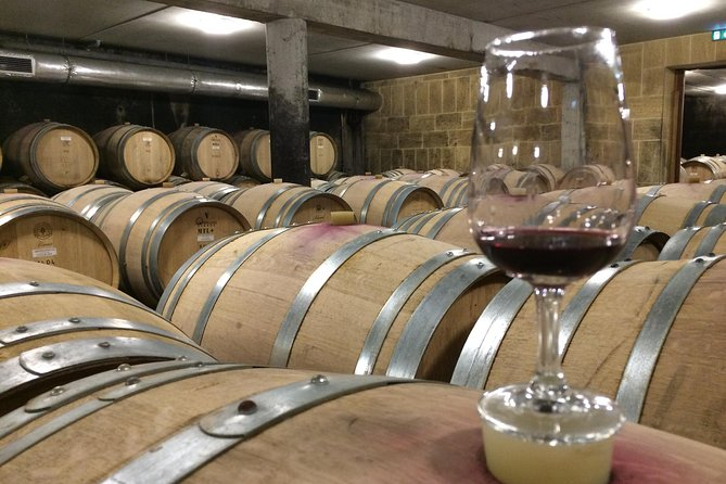 Cotes du Rhone Wine Tour - Full Day - Small Group Tour from Lyon