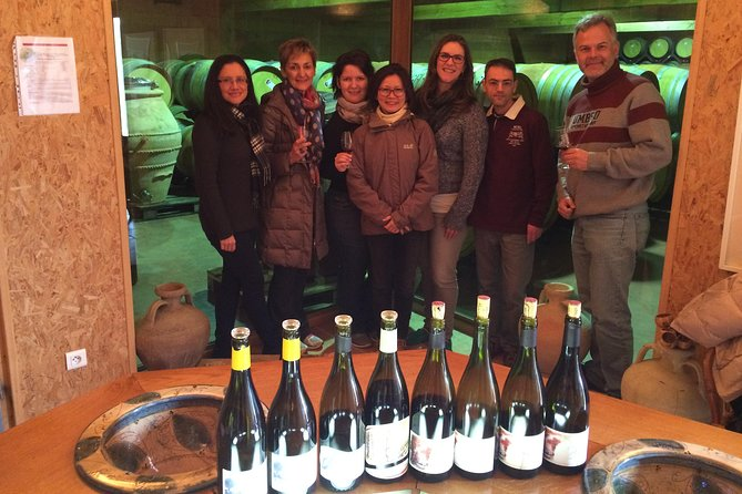 The Original Syrah Wine Tour - Morning - Small Group Tours from Lyon
