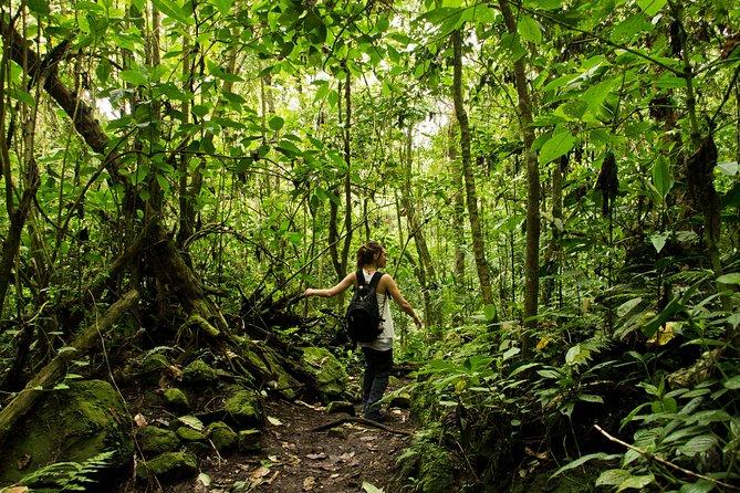 Transport til Chicaque National Park