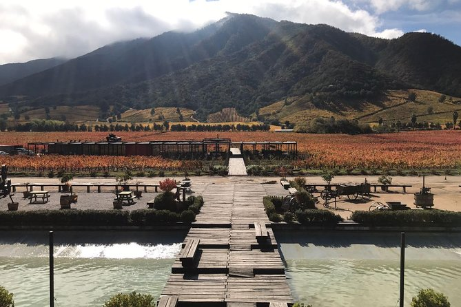 Colchagua valley Wineries Montes and Lapostolle