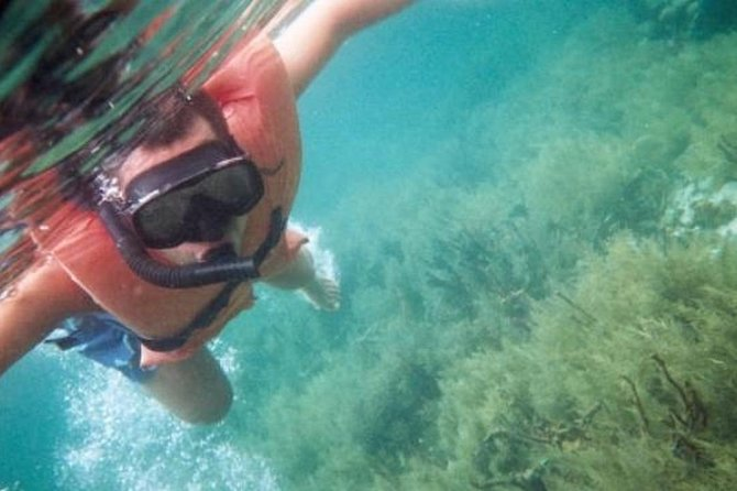 Snorkeling and Hiking in Cahuita National Park
