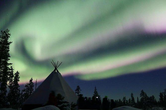 Image result for northern light tour