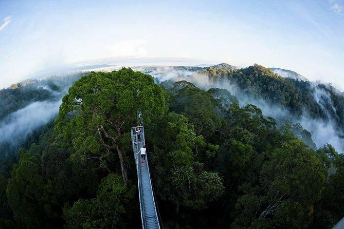 Sumbiling Temburong Canopy Walk Daytrip