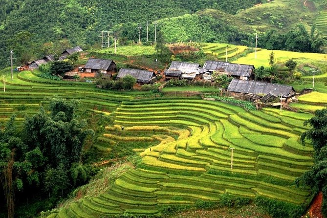 3 days 3 nights Private tour Sapa trekking homestay experience from Hanoi