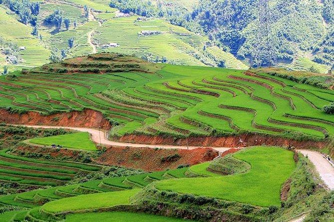 Sapa trekking 2 days 2 nights group tour - homestay from Hanoi