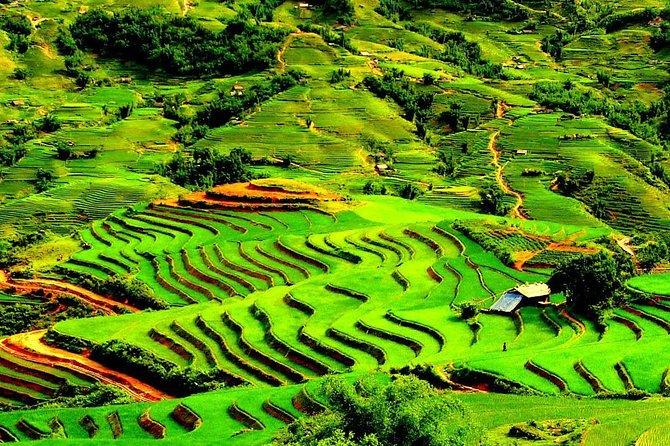 4 days Hanoi Escape: Halong bay and Sapa