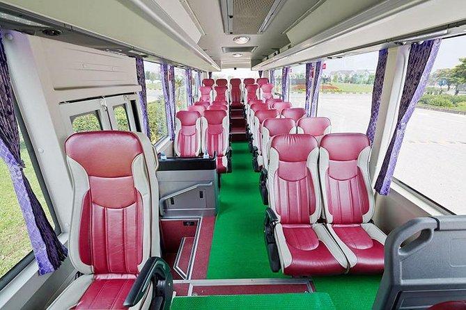 Daily Shuttle Bus Catba- Hanoi Transportation Small Group