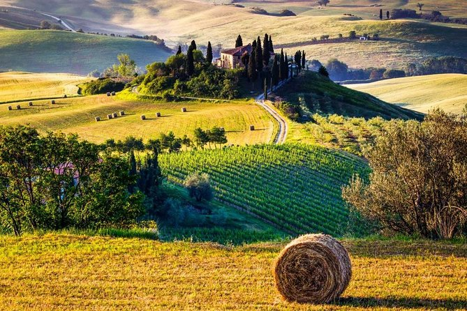 Organic Tour in Tuscany - 6 days tour - Honeymoon