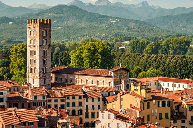 Half Day Tour from Florence to Lucca