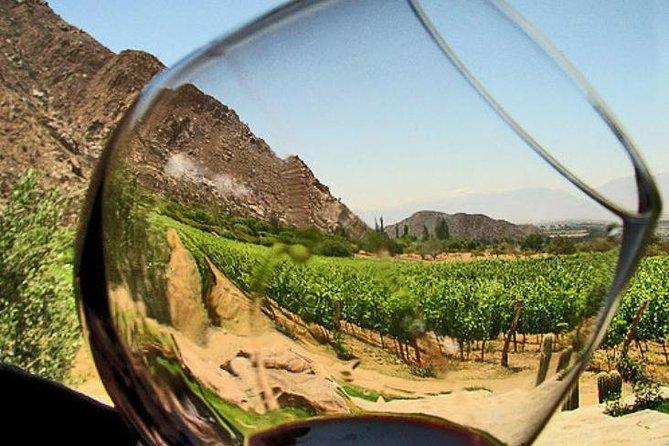 Ensenada Shore Excursion: Entre Santos and El Cielo Winery Tours with Lunch