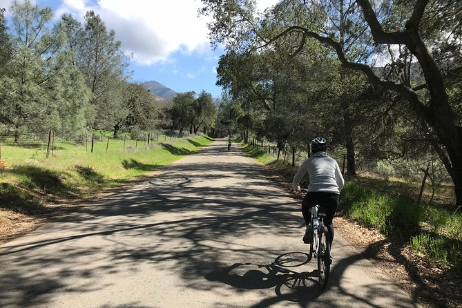 Wine Country Half-Day Bike Tour from Solvang - w/o Lunch