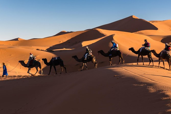 3-Day Private Tour to Erg Chebbi Dunes, Atlas Mountains and Todra Gorges from Marrakech