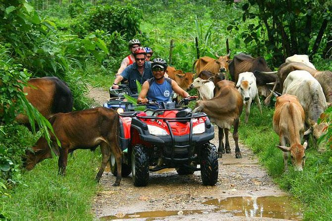 Half-Day Adventure: 4x4 ATV, Water Cave and Dominican Culture from Punta Cana