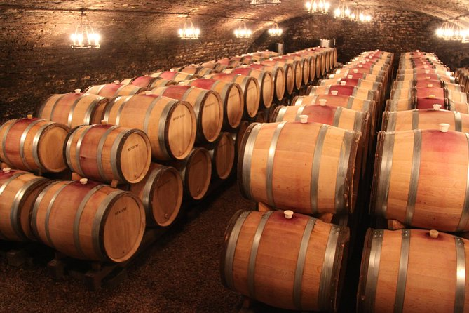 Divine Small Group Wine Tasting Guided Day Tour in Burgundy from Beaune