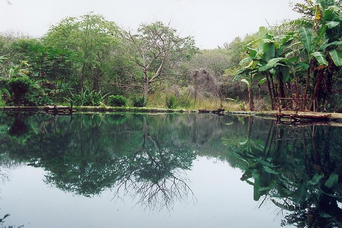 Private Manglares Churute Ecological Reserve from Guayaquil photo 2