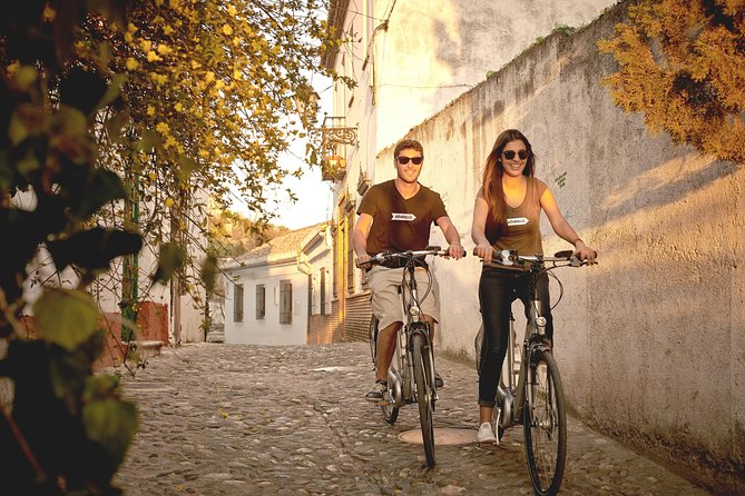 Granada Electric Bike Guided Tour