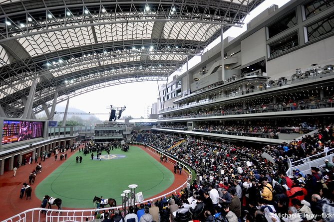 Hong Kong Horse Racing Tour photo 1