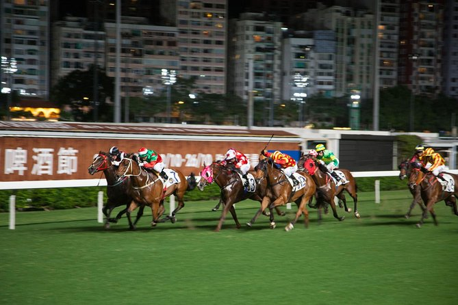 Hong Kong Horse Racing Tour photo 6
