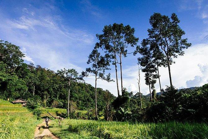 Rural Explorer Mountain Biking Tour Chiang Mai