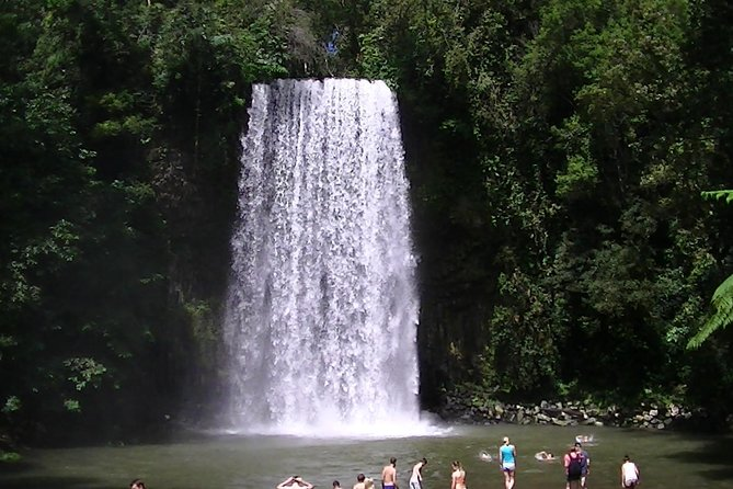 Atherton Tablelands Private Waterfalls Day Trip from Cairns