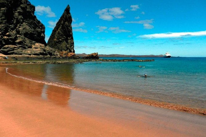 8-Day Galapagos Island Hopping Tour: Land Tour Including 4 Islands