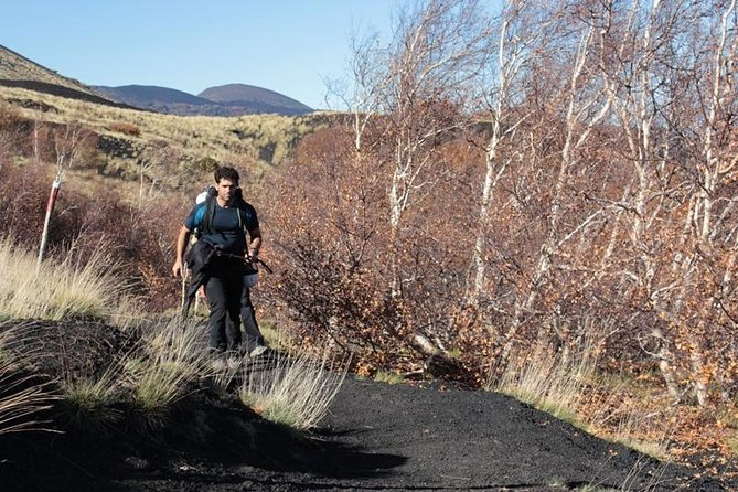 Etna Trekking Half-Day Tour from Taormina