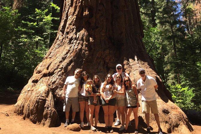 Off-Road Giant Sequoia 4x4 Tour