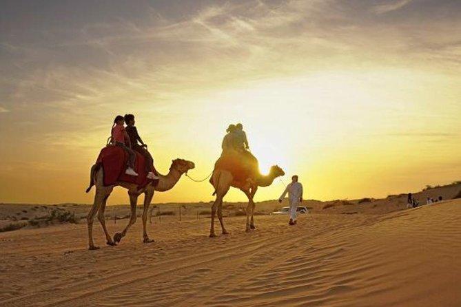 Sunset Desert Safari and VIP Desert Camp Buffet Dinner