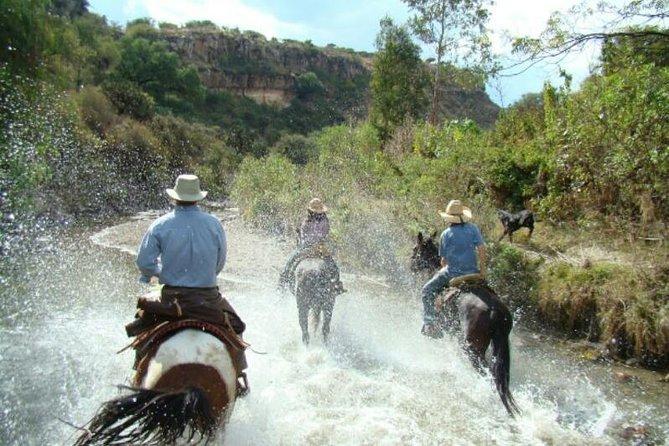 Half-Day Horseback Riding Adventure