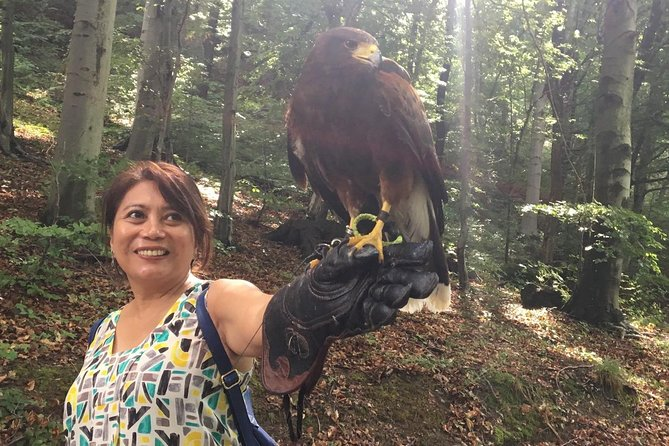 Medvednica Nature Park Falconry Tour from Zagreb