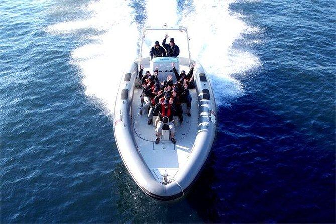 Private 1-Hour Helsinki Archipelago High-speed Boat Cruise