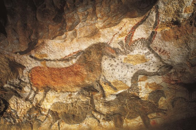 Half Day Tour Lascaux IV from Sarlat photo 3