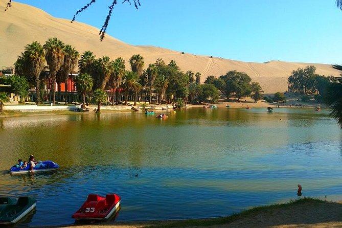 Ballestas Islands, Tacama Vineyard & Huacachina Oasis Private Tour from Lima