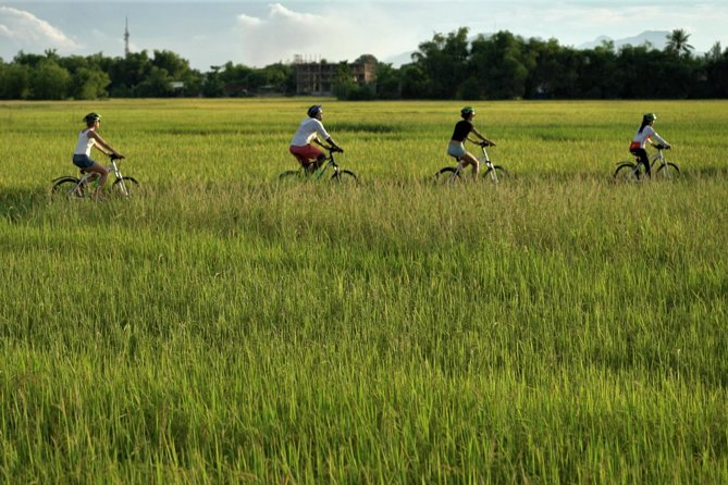 Half-Day Hoi An Countryside and Villages Bike Tour from Da Nang