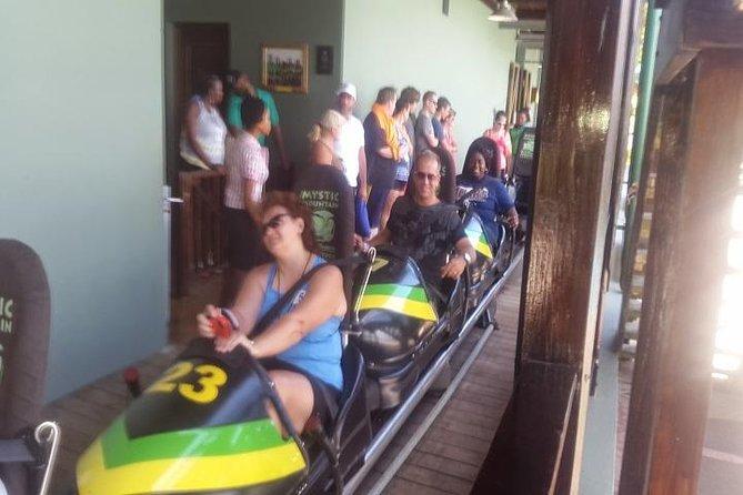 Mystische Bergregenwaldtour von Montego Bay aus